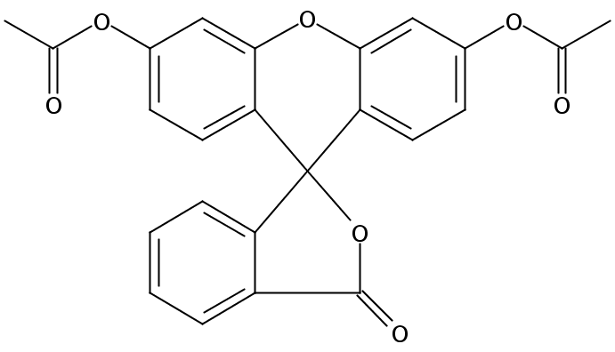 Chemical Structure for Fluorescein diacetate